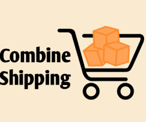 2 Reasons Why You Should Enable Combine Shipping in Your Web Store